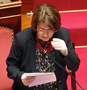abate intervento in senato.jpeg